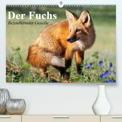 Der Fuchs. Bezaubernder Geselle (Premium, hochwertiger DIN A2 Wandkalender 2020, Kunstdruck in Hochglanz) von Stanzer,  Elisabeth