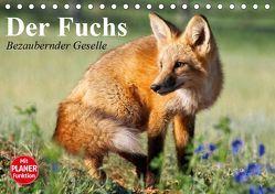 Der Fuchs. Bezaubernder Geselle (Tischkalender 2019 DIN A5 quer) von Stanzer,  Elisabeth