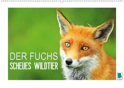 Der Fuchs: scheues Wildtier (Premium, hochwertiger DIN A2 Wandkalender 2020, Kunstdruck in Hochglanz) von CALVENDO