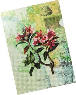 Die Gärten der Künstler Bunte Sichthülle Motiv Blütenstrauch von Schöll,  Stephan