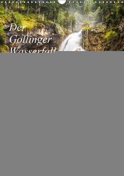 Der Gollinger Wasserfall (Wandkalender 2019 DIN A3 hoch) von Reicher,  Thomas