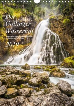 Der Gollinger Wasserfall (Wandkalender 2019 DIN A4 hoch) von Reicher,  Thomas