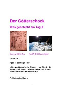 Der Götterschock  – Was geschieht am Tag X von Kaltenböck-Karow,  Rainer