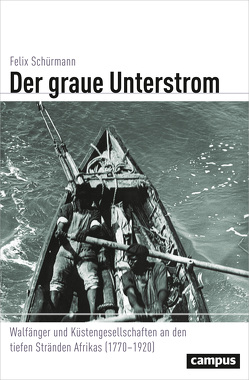 Der graue Unterstrom von Schürmann,  Felix