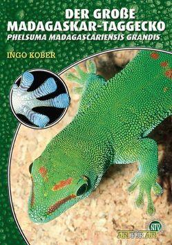 Der Große Madagaskar Taggecko von Kober,  Ingo