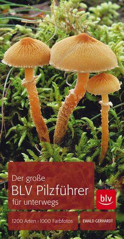 Der große BLV Pilzführer für unterwegs von Gerhardt,  Ewald
