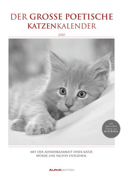 Der große poetische Katzenkalender 2020 – Literarischer Bildkalender A3 (30 x 42) – mit Zitaten – schwarz-weiß – Tierkalender von ALPHA EDITION