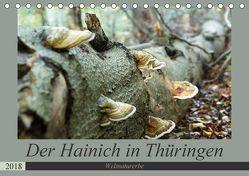 Der Hainich in Thüringen – UNESCO-Weltnaturerbe (Tischkalender 2018 DIN A5 quer) von Flori0, k.A.