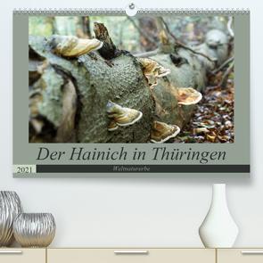Der Hainich in Thüringen – Weltnaturerbe (Premium, hochwertiger DIN A2 Wandkalender 2021, Kunstdruck in Hochglanz) von Flori0