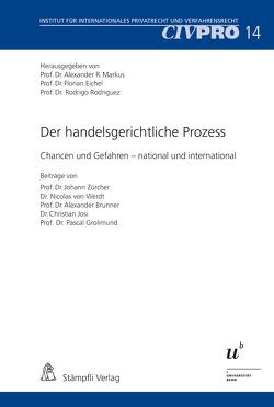 Der handelsgerichtliche Prozess von Eichel,  Florian, Markus,  Alexander, Rodriguez,  Rodrigo