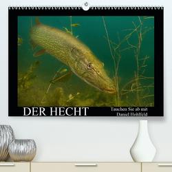 Der Hecht – Tauchen Sie ab mit Daniel Hohlfeld (Premium, hochwertiger DIN A2 Wandkalender 2021, Kunstdruck in Hochglanz) von Hohlfeld,  Daniel