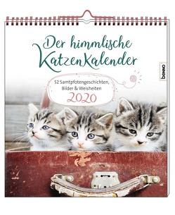 Der himmlische Katzenkalender 2020 von Wendler,  Heike