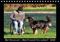 Der Hovawart… Dein Freund fürs Leben ! (Tischkalender 2019 DIN A5 quer) von Siebert,  Jens