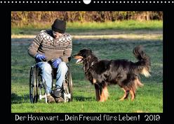 Der Hovawart… Dein Freund fürs Leben ! (Wandkalender 2019 DIN A3 quer) von Siebert,  Jens
