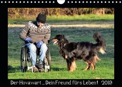Der Hovawart… Dein Freund fürs Leben ! (Wandkalender 2019 DIN A4 quer) von Siebert,  Jens