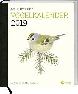 Der illustrierte Vogelkalender 2019 von Ottosson,  Mats, Zetterström,  Bill, Zetterström,  Dan