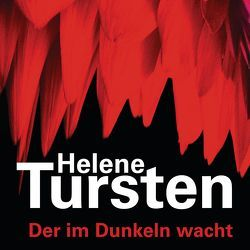 Der im Dunkeln wacht von Danowski,  Katja, Rüegger,  Lotta, Tursten,  Helene, Wolandt,  Holger