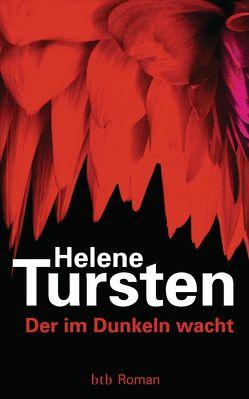 Der im Dunkeln wacht von Rüegger,  Lotta, Tursten,  Helene, Wolandt,  Holger