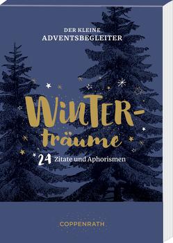 Der kleine Adventsbegleiter – Winterträume von Fischer,  Karlotta