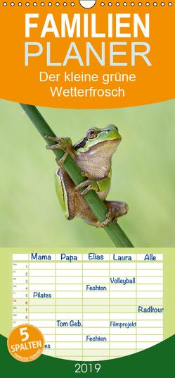 Der kleine grüne Wetterfrosch – Familienplaner hoch (Wandkalender 2019 , 21 cm x 45 cm, hoch) von Wurster,  Beate