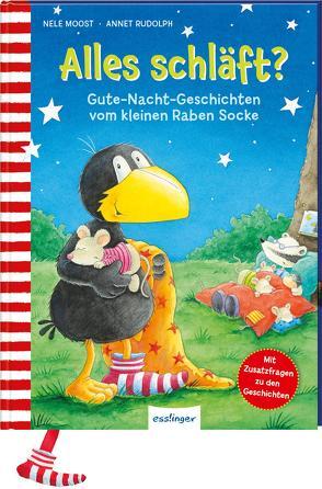 Der kleine Rabe Socke: Alles schläft? von Moost,  Nele, Rudolph,  Annet