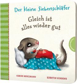 Der kleine Siebenschläfer: Gleich ist alles wieder gut von Bohlmann,  Sabine, Schoene,  Kerstin