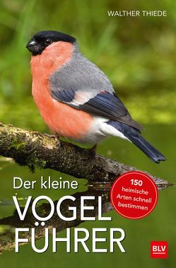 Der kleine Vogelführer von Thiede,  Walther