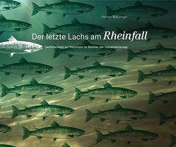 Der letzte Lachs am Rheinfall von Matzinger,  Heiner