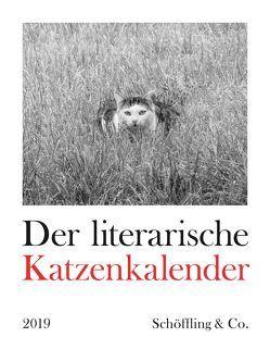 Der literarische Katzenkalender 2019 von Bachstein,  Julia