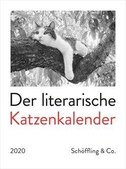 Der literarische Katzenkalender 2020 von Bachstein,  Julia