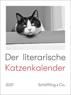 Der literarische Katzenkalender 2021 von Bachstein,  Julia