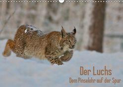 Der Luchs – Dem Pinselohr auf der Spur (Wandkalender 2019 DIN A3 quer) von Rosengarten,  Stefan