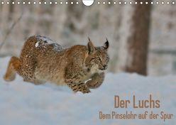 Der Luchs – Dem Pinselohr auf der Spur (Wandkalender 2019 DIN A4 quer) von Rosengarten,  Stefan