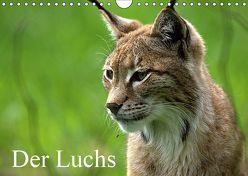 Der Luchs / Geburtstagskalender (Wandkalender 2019 DIN A4 quer) von Klatt,  Arno