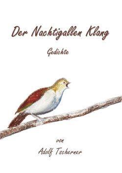 Der Nachtigallen Klang von Tscherner,  Adolf