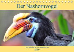 Der Nashornvogel – Der Schnabel ist sein Markenzeichen (Tischkalender 2019 DIN A5 quer) von Klatt,  Arno