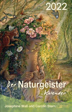 Der Naturgeister-Kalender 2022 von Stern,  Carolin, Wall,  Josephine
