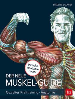 Der neue Muskel Guide von Delavier,  Frédéric