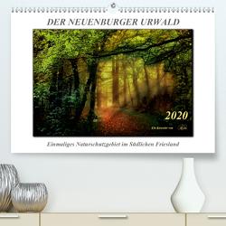 Der Neuenburger Urwald (Premium, hochwertiger DIN A2 Wandkalender 2020, Kunstdruck in Hochglanz) von Roder,  Peter
