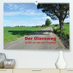 Der Olavsweg (Premium, hochwertiger DIN A2 Wandkalender 2021, Kunstdruck in Hochglanz) von Lange,  Wolfgang