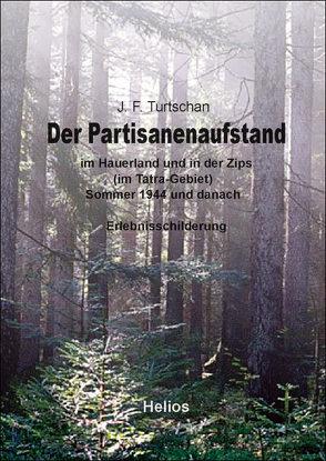 Der Partisanenaufstand von Turtschan,  Johann