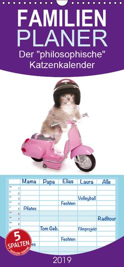 """Der """"philosophische"""" Katzenkalender 2019 – Familienplaner hoch (Wandkalender 2019 , 21 cm x 45 cm, hoch) von Missou,  Madame"""