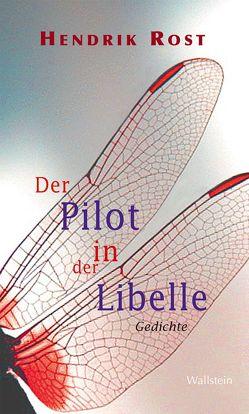 Der Pilot in der Libelle von Rost,  Hendrik