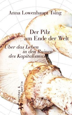 Der Pilz am Ende der Welt von Höfer,  Dirk, Lowenhaupt Tsing,  Anna