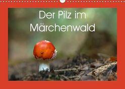 Der Pilz im Märchenwald (Wandkalender 2019 DIN A3 quer) von Flori0