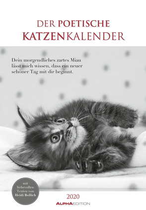 Der poetische Katzenkalender 2020 – Literarischer Bildkalender (24 x 34) – mit Zitaten – schwarz-weiß – Tierkalender – Wandkalender von ALPHA EDITION