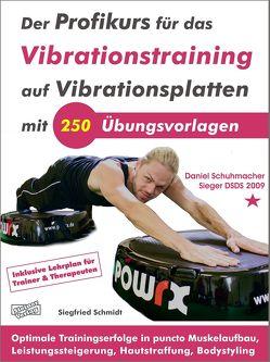 Der Profikurs für das Vibrationstraining auf Vibrationsplatten mit 250 Übungsvorlagen von Schmidt,  Siegfried, Stange,  Frank
