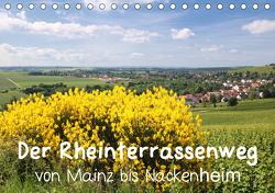 Der Rheinterrassenweg von Mainz bis Nackenheim (Tischkalender 2021 DIN A5 quer) von Dürr,  Brigitte