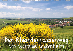 Der Rheinterrassenweg von Mainz bis Nackenheim (Wandkalender 2021 DIN A2 quer) von Dürr,  Brigitte