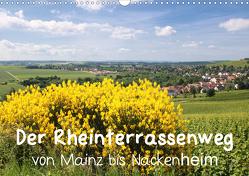 Der Rheinterrassenweg von Mainz bis Nackenheim (Wandkalender 2021 DIN A3 quer) von Dürr,  Brigitte